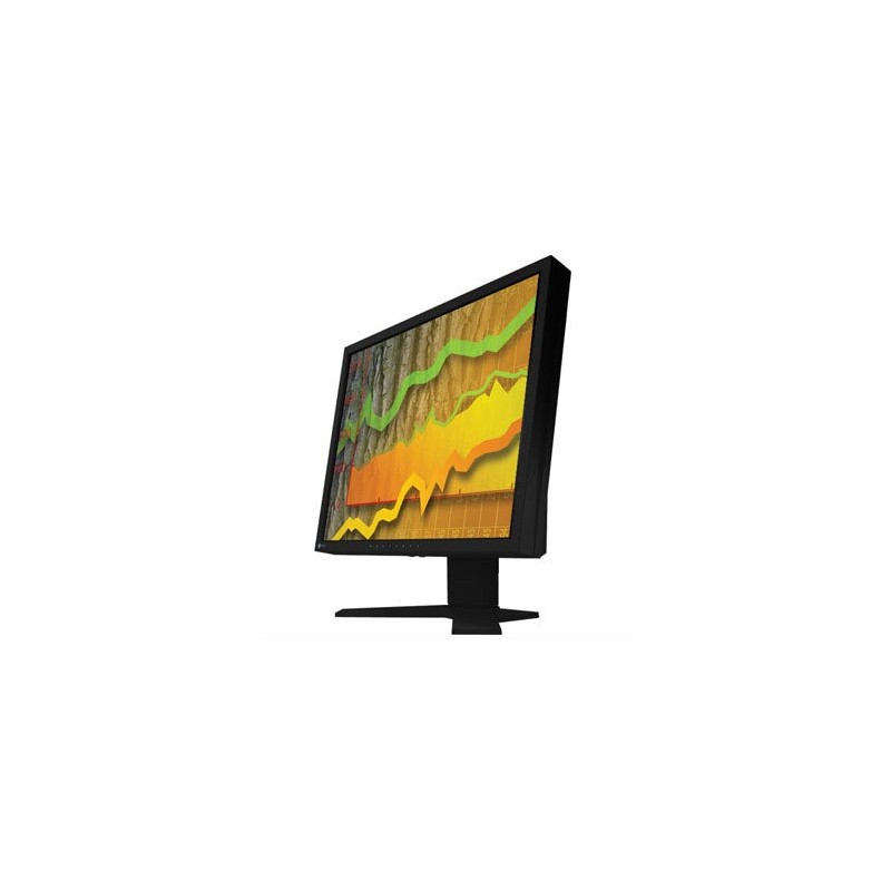 Monitoare Negru LCD 6ms Eizo Flexscan S1901